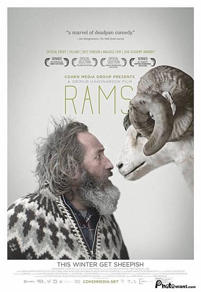 羊男的冰島冒險 Rams