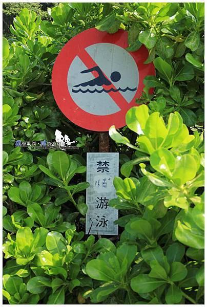 (6)IMG_7601浮水