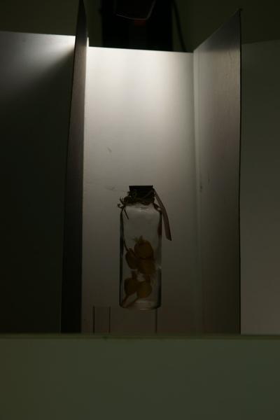 2009-12-4-映葉攝影課25.JPG