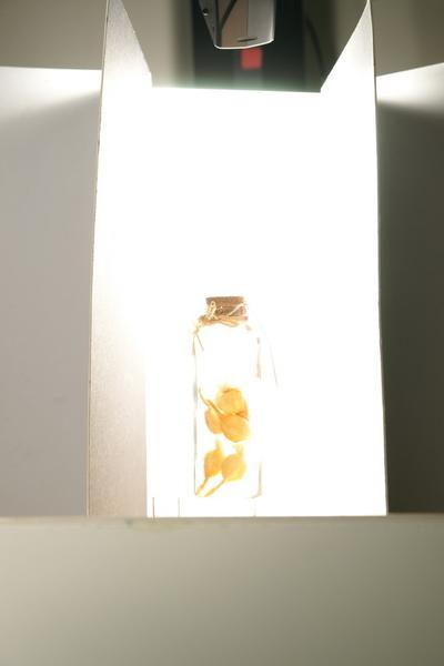 2009-12-4-映葉攝影課28.JPG