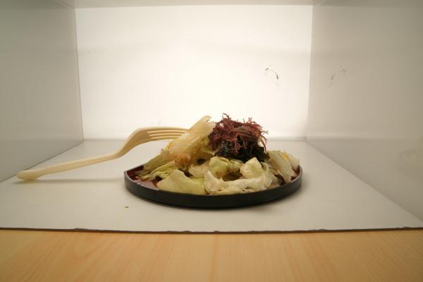 2009-12-11-映葉攝影課-14.JPG