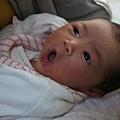 2009-12-20-小茉莉02.jpg