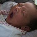 2009-12-20-小茉莉04.jpg