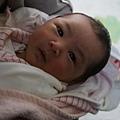 2009-12-20-小茉莉05.jpg