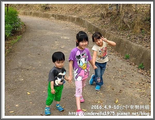 P_20160410_101007_1_p.jpg