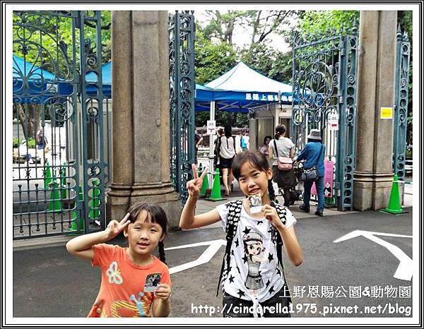 P_20160625_133046_1_p.jpg