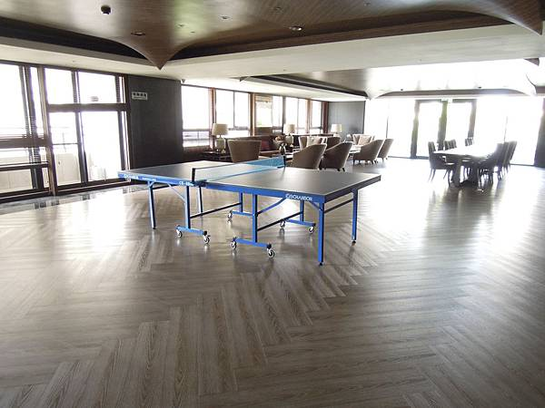 雲鼎公設-3樓桌球.JPG