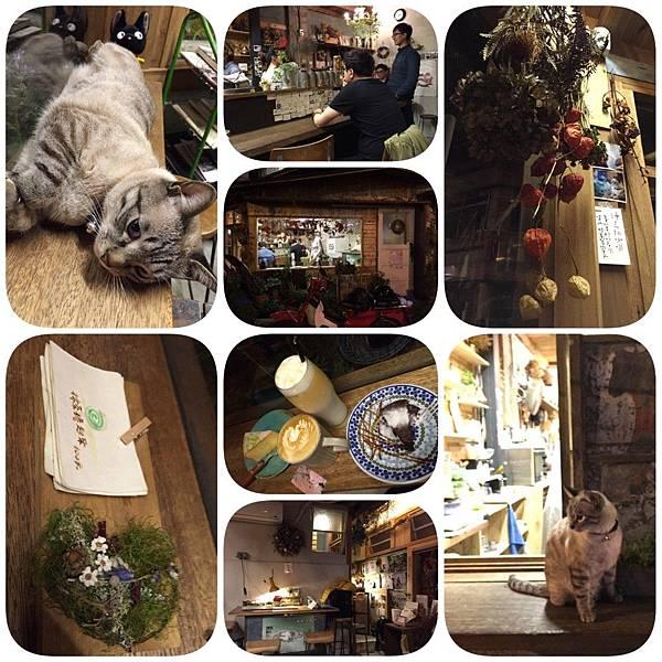 20160324_1340.jpg
