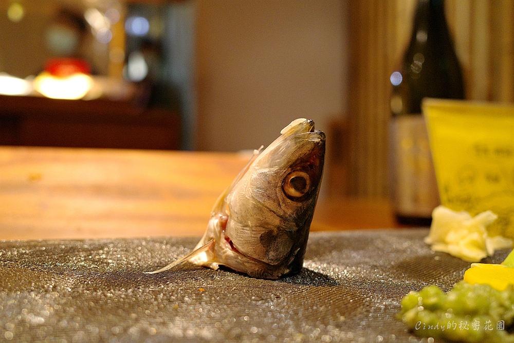 53 沙丁魚.jpg