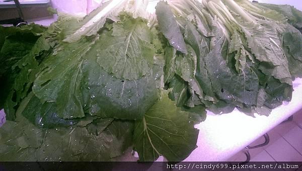 001洗菜.jpg