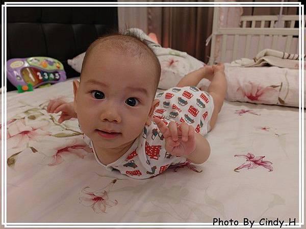 SAM_0712-s.jpg