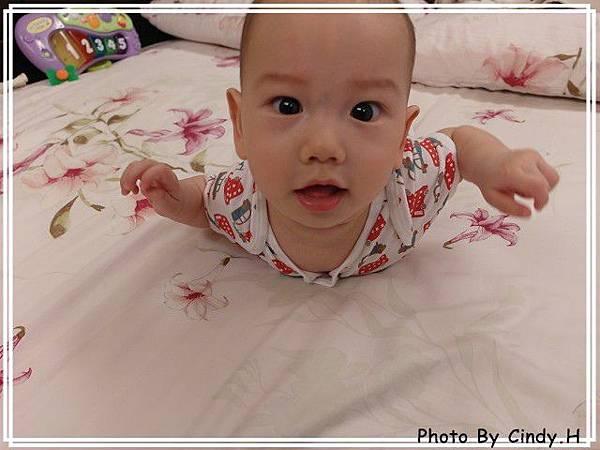 SAM_0715-s.jpg