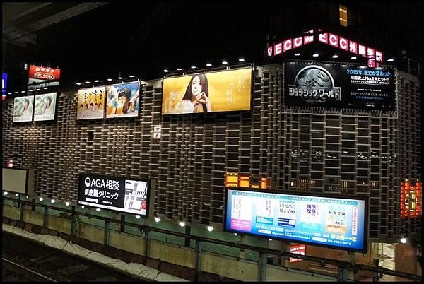 2015東京DSC09433-123.JPG