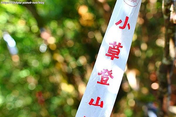 20110917_052.JPG