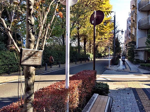 日本東京箱根五天四日 Part 4 -7