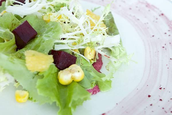 甜菜根沙拉-2