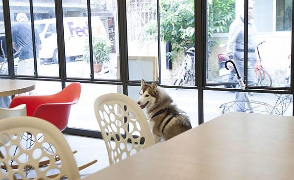 MurMur Cafe - 9