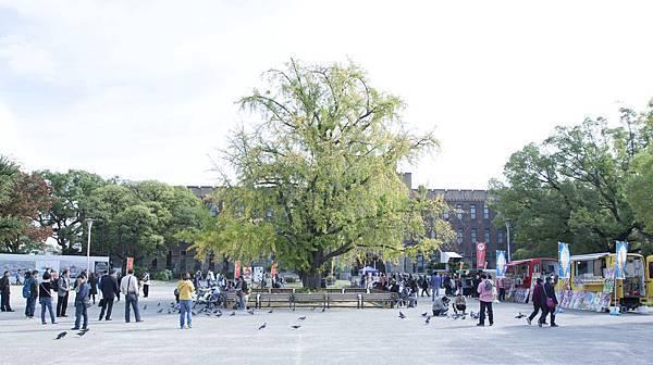 大阪城2015年10月 - 1