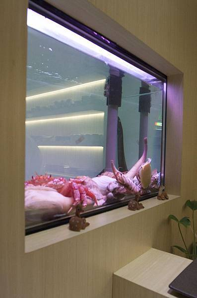 鹿羣日本料理 - 36