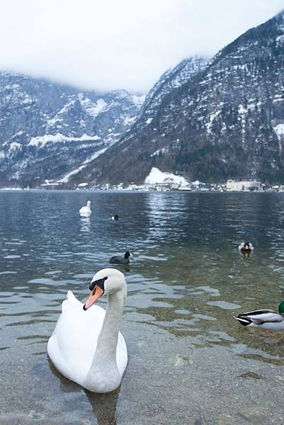 Hallstatt and Seehotel II - 27