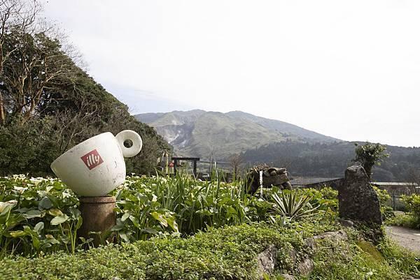 竹子湖綠山谷咖啡廳 - 3