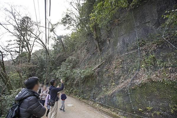 大阪近郊箕面瀑布 - 3
