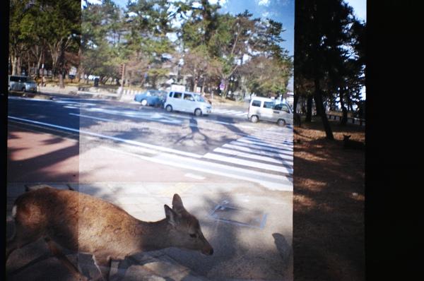奈良街道拼貼