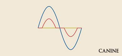 曲線.jpg