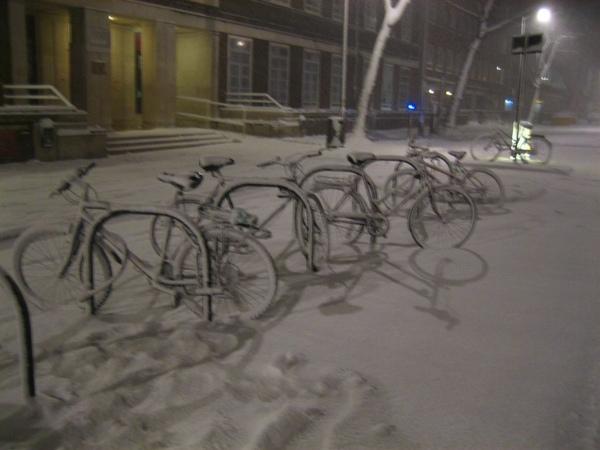 more bikes.jpg