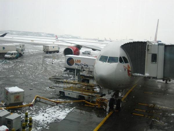 my plane.jpg