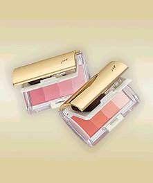 Shiseido PN 炫金柔彩
