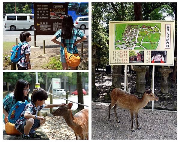 2014京阪奈良-6-1.jpg