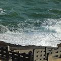 今天風浪很大,乘船顛簸得很厲害
