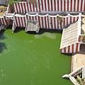 廟的大水池