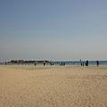 每個Kerala的海灘都十分乾淨,種植的植物也有規劃~ 硬是跟別的邦不一樣! (我彷彿是Kerala人一直在說它的好話)