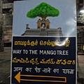 芒果樹指示牌,芒果樹那邊人太多了,只能站在迴廊觀看...