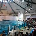 海獅表演場