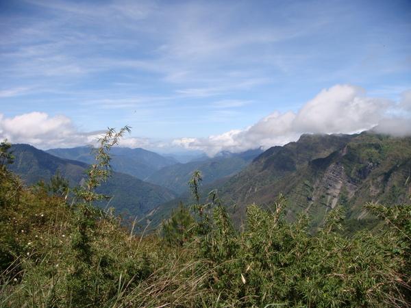 山上就是有這麼美的景色