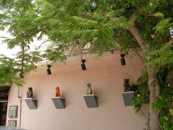 貓咪,裝飾在家門圍牆上