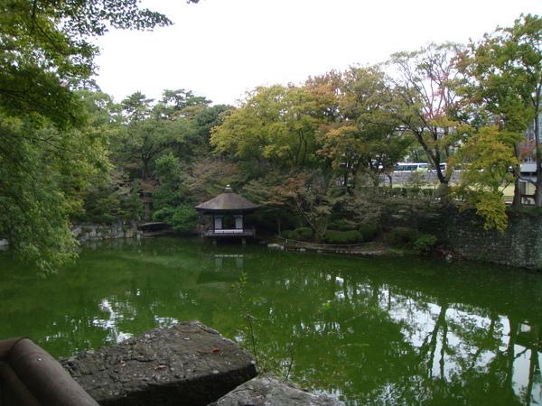 漂亮的湖? 應該是池塘