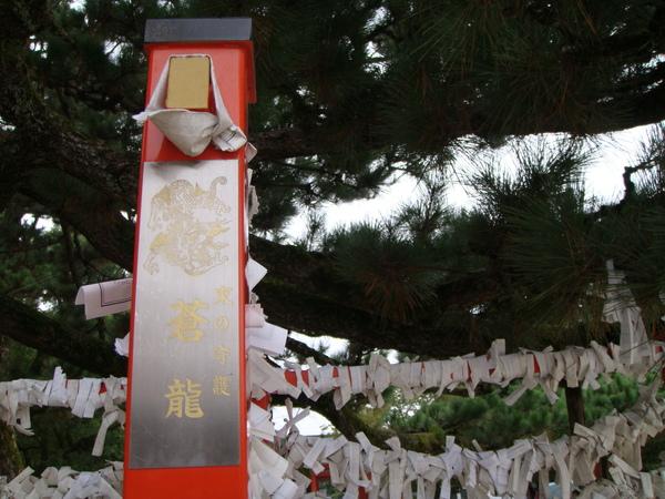 祈願樹,綁滿了願望,像雪