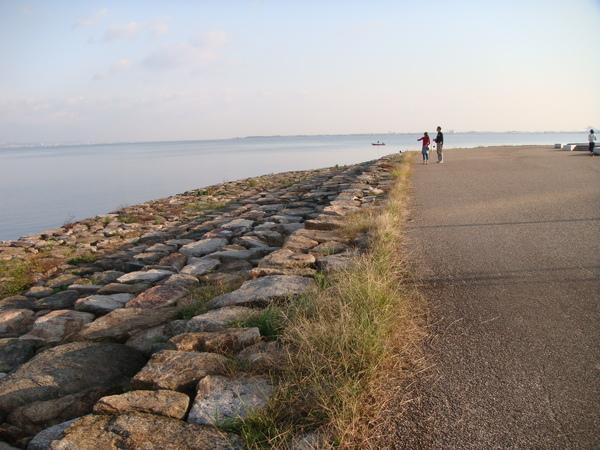一早有很多人來散步與運動