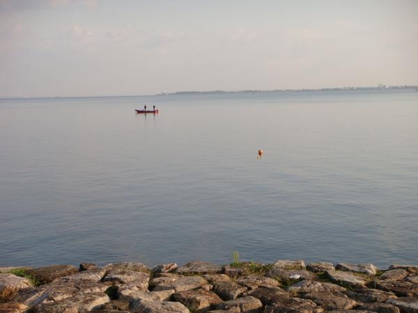 琵琶湖是不是日本第一大湖?  我得上維基看看