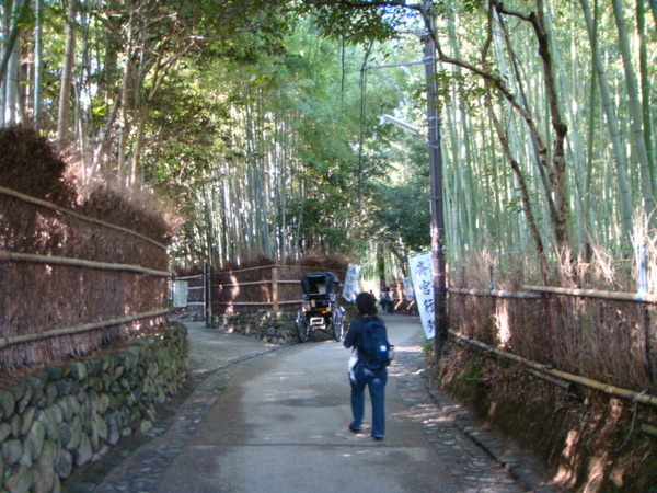 嵐山著名的竹林步道,我們要去坐小火車