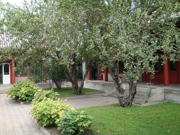 郭若沫的庭園,小巧精緻