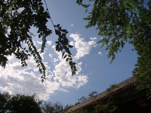 好美的藍天