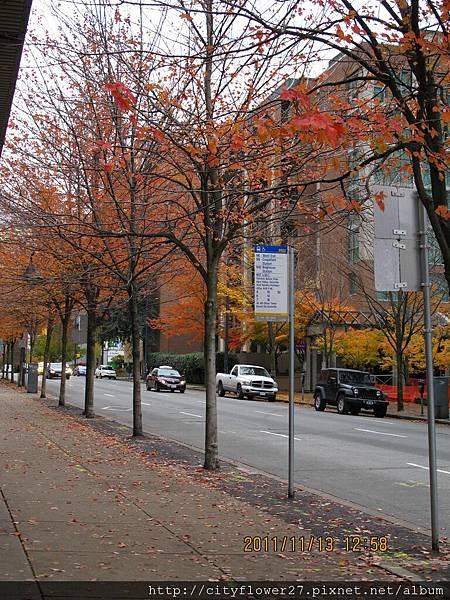downtown的街景
