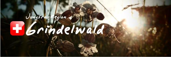 格林德瓦 Grindelwald<全世界最美麗村莊>