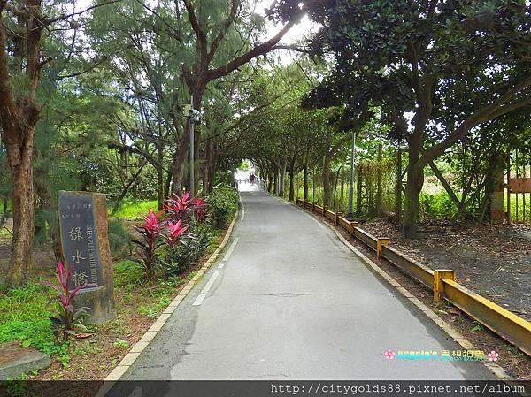 台東森林公園011.JPG