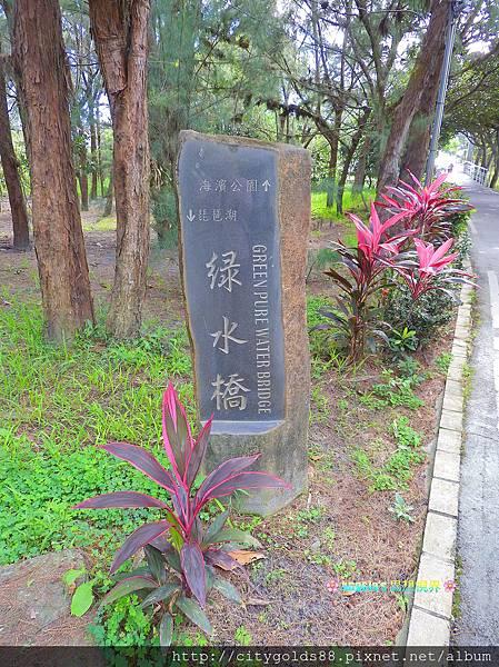 台東森林公園012.JPG
